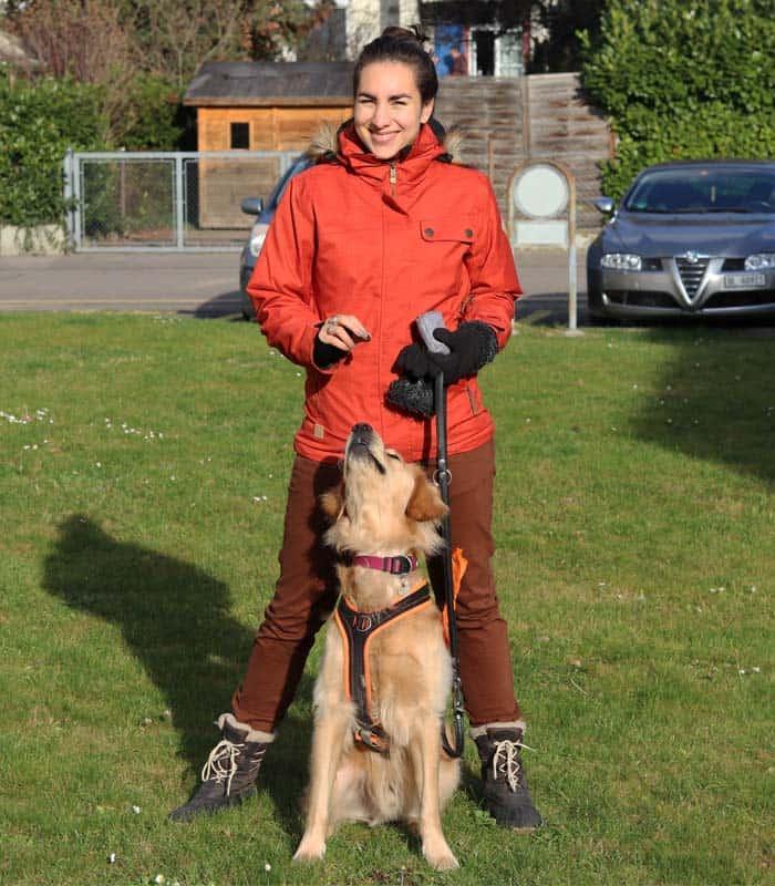 hundetrick-bailey-1